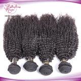 O emaranhado cheio da cutícula não livra nenhum cabelo não processado Curly Kinky de derramamento do brasileiro do Virgin de Dropshipping