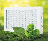 LED wachsen helle Medizin LED wachsen helle LED wachsen Beleuchtung