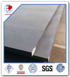 Placa de aço laminada a alta temperatura ASTM A36 de carbono de 20 FT