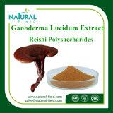 Anti-Radiación Ganoderma Lucidum Extracto / Reishi Hongos Extracto Polvo 20: 1 Precio bajo