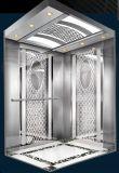 강철 건물 홈 엘리베이터를 위한 주거 상승