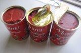 機械によって缶詰にされるトマトを作る小さいトマトのり機械トマトソース
