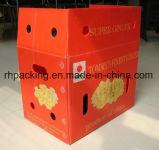 Boîte en plastique de pp/modèle/lumière dans le poids mais durable/rentable de non-fuite (la durée de vie de carton est 1-2 fois, notre cadre peut être jusqu'à 100 fois