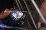 V5セクターB/Wのスキャンナーの獣医の超音波
