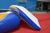 Parque inflável da água do projeto louco grande para o jogo do esporte