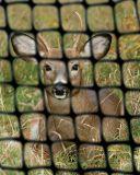 Compensation de HDPE/réseau de jardin frontière de sécurité de cerfs communs