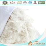 Anatra bianca di lusso dell'oca giù che riempie cuscino domestico