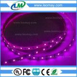 최고 광도 48W 24V LED는 240LEDs/m를 가진 2835 SMD를 분리한다