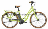 E-Bike /Street Bike города e /Adult батареи лития Mortor электрического Bike безщеточный (SY-E2819)