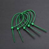 Kabelbinder-/Zip-Gleichheit-/Electrical-Verdrahten/Nylon66 Kabelbinder 3.6X200 mm