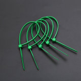 Serre-câble câblage/Nylon66 3.6X200 millimètre de /Electrical de relation étroite de /Zip de serre-câble