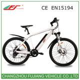 Fabrik-Preis 500W E-Fahrrad elektrischer Fahrrad-Installationssatz 2017