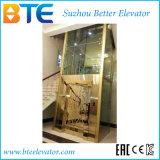 Elevatore domestico panoramico di osservazione con la struttura dell'asta cilindrica