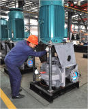 Hsv Serien-Cer genehmigte vertikale doppelte Absaugung-aufgeteilte Fall-Pumpe (HSV125-80-300A)