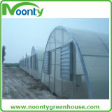 野菜栽培のための農業の経済的なトンネルの温室