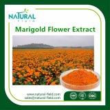 自然なルテイン、ゼアキサンチン、マリーゴールドの花のエキス