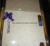 Nuove mattonelle piene naturali del marmo del corpo con superficie lucida