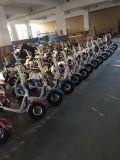 Vespa eléctrica con las ruedas grandes, vespa Citycoco Harley del estilo popular de 2016 de la ciudad de la manera