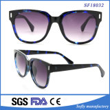 Gafas de sol azules y negras del marco grande de Demi con la lente púrpura