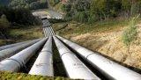 Ajustage de précision de pipe de la bonne qualité UPVC CPVC Dn40