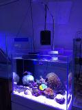 Lumière brevetée d'aquarium des poissons 90W utilisée par eau de mer de produit