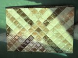 De ondoordringbare Geknipte Y Pisos DE Casa Wall Tegel van Azulejos paragraaf