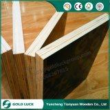 Дешевые тополь/твёрдая древесина/переклейка Combi обшивают панелями 4X8