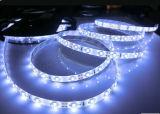 Luz de tira flexible de la fabricación SMD 2835 expertos LED