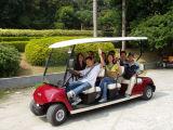 Un'automobile facente un giro turistico a pile delle 8 persone