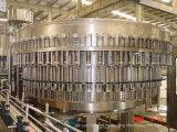 Rotatoire-Type en plastique remplissage de l'eau minérale de bouteille de 2000-48000bph Autoimatic