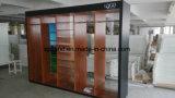 Cabina larga funcional combinada cinco unidades para la ropa/los zapatos/los accesorios