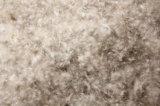 Anatra grigia di certificazione 70% del pupazzo di neve RDS giù con le relazioni sull'esperimento di Idfl