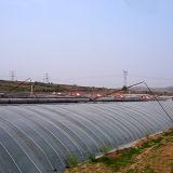 Парник солнечного света низкой стоимости с стабилизированной рамкой
