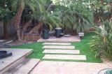 Het hoogste Gras van de Verkoop voor de Speelplaats van Kinderen met Lage Prijs