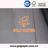 Papier de retrait respectueux de l'environnement de la taille A3 pour la peinture fabriquée en Chine
