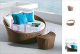 Muebles al aire libre de Lyingbed Sunbed de la rota del PE del ocio