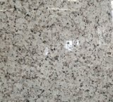 Granite variopinto Tile e Slab per Wall Panel
