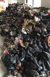 초침은 아프리카 시장을%s 도매로 구두를 신긴다