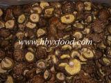Prodotti agricoli secchi fungo sano fresco
