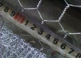 Malha galvanizada de fio de galinha / rede de arame hexagonal