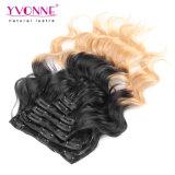 Grampo de cabelo peruano de Ombre em extensões do cabelo humano