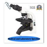Endloses LED-binokulares biologisches Mikroskop
