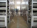 Secador desidratado série da correia do processamento de vegetais do Dwt
