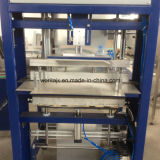 Film Sleeve Verpackungsmaschine (WD-150A)
