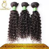 Donne di colore favorite senza qualsiasi riccio crespo indiano naturale chimico dei capelli umani di Fdx 100%