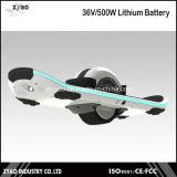 Un uno mismo de Hoverboard de la rueda que balancea la mini vespa