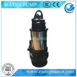 Qds-Cw/Dw Sewage Pumps Use in Discharging Domestic Waste Water