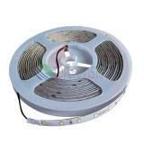 2835 120LEDs IP68 impermeabilizzano l'indicatore luminoso del nastro del LED per l'alta qualità