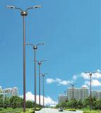 lámpara de calle de los 6m LED con los brazos dobles