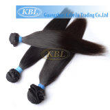 Brasilianer-Menschenhaar des gerades Haar-Grad-5A
